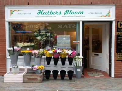 Hatters Bloom